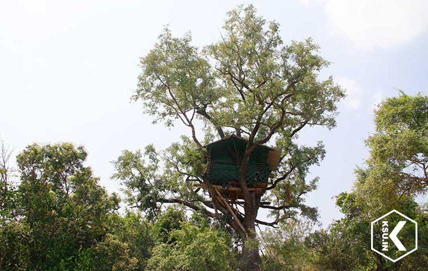 Karakkad Tree Top House Chinnar